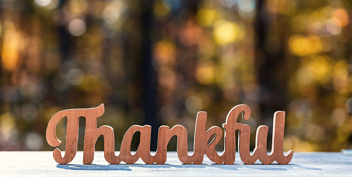 thankful wooden words on white deck in autumn woods