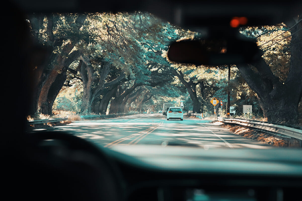 View of street from car